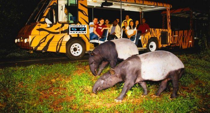 Vườn thú Night Safari