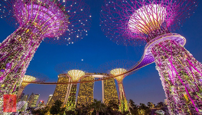 Garden by the Bay singapore-min